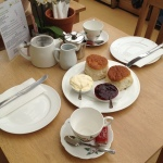 newton abbot cream tea
