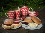 North Devon Cream Tea Hele