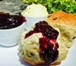 otterton mill cream tea east devon