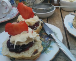 cream tea Port Isaac
