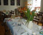 falmouth cream tea tearoom